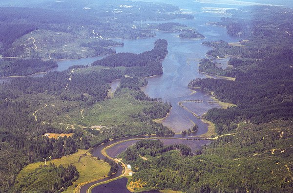 Coos Bay Estuary Informs FERC that Terminal and Pipeline Would Violate Its Rights